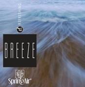 Náplň do velkoprostorového osvěžovače Spring Air (IconoScent, ArtyScent) - BREEZE (500ml)