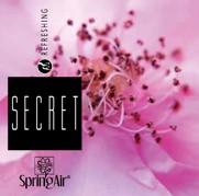 Náplň do velkoprostorového osvěžovače Spring Air (IconoScent, ArtyScent) - SECRET (500ml)