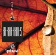 Náplň do velkoprostorového osvěžovače Spring Air (IconoScent, ArtyScent) - BERBERRIES (500ml)