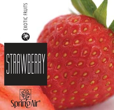 Spring Air náplň do osvěžovače - STRAWBERRY (250ml)