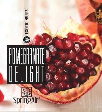Náplň do velkoprostorového osvěžovače Spring Air (IconoScent, ArtyScent) - POMEGRANATE DELIGHT (500ml)